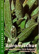 View larger image of 'Adromischus'