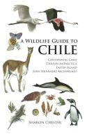 View larger image of 'A Wildlife Guide to Chile'
