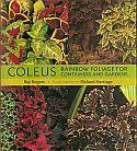 View larger image of 'Coleus'