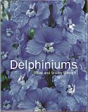 View larger image of 'Delphiniums'