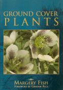 View larger image of 'Ground Cover Plants'