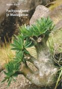 View larger image of 'Pachypodiums in Madagascar'