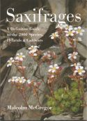 View larger image of 'Saxifrages'