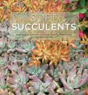 View larger image of 'Soft Succulents'