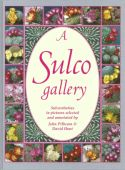 View larger image of 'A Sulco Gallery'