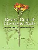 View larger image of 'Besler's Book of Flowers & Plants'