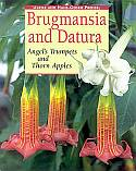 View larger image of 'Brugmansia and Datura'