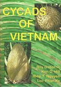 View larger image of 'Cycads of Vietnam'